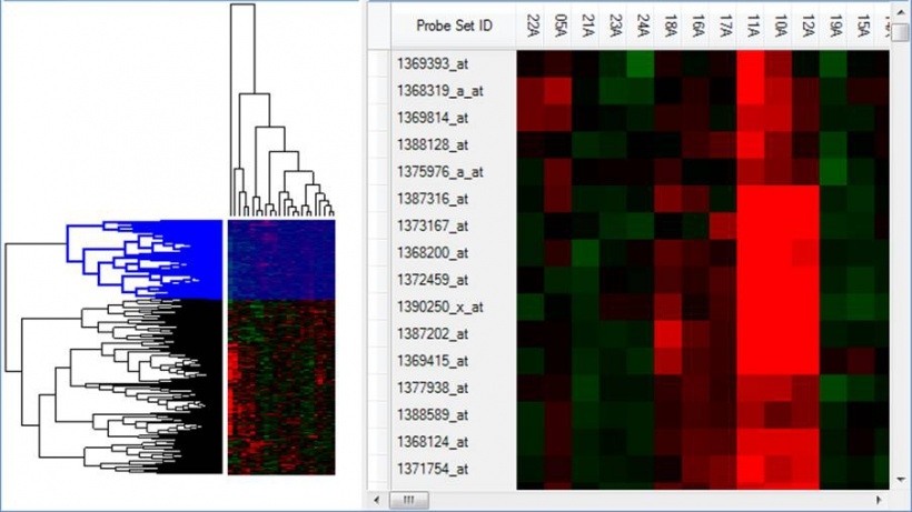 MicroArray HierarchicalClustering - Array Suite Wiki